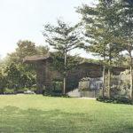 Martin-Modern-lawn